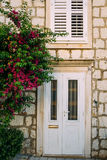 Vieilles portes blanches Texture en bois Photographie stock libre de droits