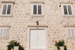 Vieilles portes blanches Texture en bois Images libres de droits
