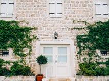 Vieilles portes blanches Texture en bois Images stock