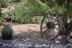 Vieilles roues dans le désert Photographie stock
