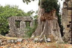Vieilles ruines du Panama Photographie stock libre de droits
