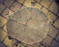 Vieilles textures en bois normales Photo libre de droits