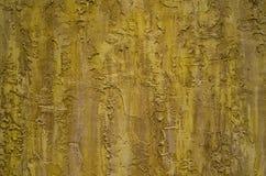vieilles textures grunges de mur du bouleau 3D pour le fond de vintage Photographie stock libre de droits