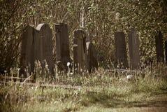 Vieilles tombes envahies et inclinées Photographie stock libre de droits