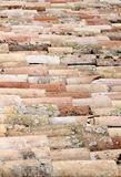 Vieilles tuiles de toit multicolores couvertes de la mousse et d'algues Images stock