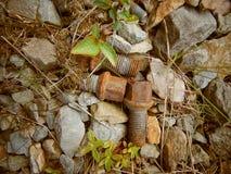 Vieilles vis rouillées s'étendant sur le chemin en pierre image libre de droits
