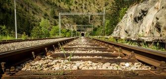 Vieilles voies ferroviaires avec un tunnel en avant Photographie stock libre de droits