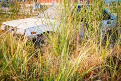 Vieilles voitures d'Abandone dans des épaves profondément dans les forêts Images libres de droits