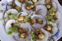 Vieiras cozidas com manteiga e alho no shell Foto de Stock