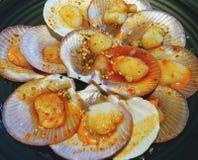 Vieiras tasmanianas frescas com manteiga fresca imagem de stock