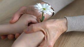 Vieja abuelita con dulzura y temblor llevando a cabo las pequeñas manos de su nieto almacen de metraje de vídeo