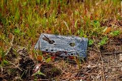 Vieja cinta de audio en la hierba fotos de archivo
