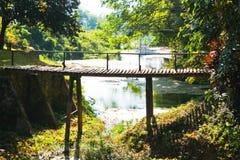 Puente viejo en bosque Imágenes de archivo libres de regalías