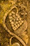 Vieja escultura de la piedra de la uva Fotos de archivo