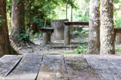 Vieja naturaleza de madera del medio de la tabla, árboles, sol fotografía de archivo