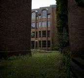 Vieja pavimentación con las malas hierbas y la hierba fotografía de archivo libre de regalías
