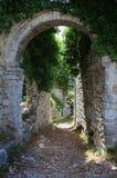 Vieja puerta de la barra Foto de archivo