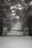Vieja puerta de la calzada en invierno Foto de archivo libre de regalías
