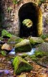 Vieja puerta en el río de la montaña Imagen de archivo libre de regalías