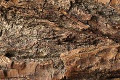 Vieja superficie de madera resistida, texturizado y detallado Fotos de archivo libres de regalías