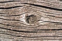 Vieja tarjeta de madera Imagen de archivo libre de regalías