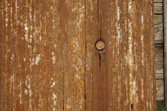 Vieja tarjeta de madera con el clavo Foto de archivo