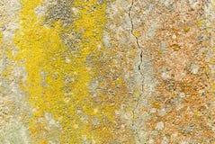 Vieja textura concreta Foto de archivo libre de regalías