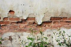 Vieja textura de la casa Fotografía de archivo libre de regalías