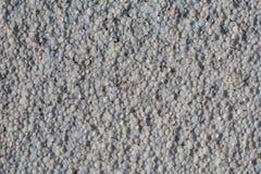 Vieja textura de la espuma foto de archivo libre de regalías