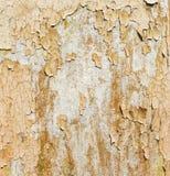 Vieja textura de la pared Fotos de archivo