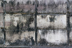 Vieja textura de la pared de ladrillo Foto de archivo