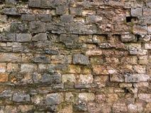 Vieja textura de la pared de ladrillo del fondo vendimia Imagen de archivo libre de regalías