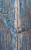 Vieja textura de madera azul con los modelos naturales Fotos de archivo libres de regalías