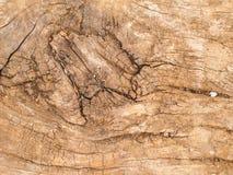 Vieja textura de madera de natural Imagenes de archivo