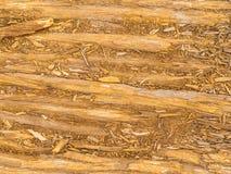 Vieja textura de madera de natural Fotos de archivo libres de regalías