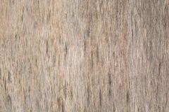 Vieja textura de madera del fondo Fondo de madera del vintage con los nudos y los agujeros de clavo Imagen de archivo