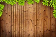 Vieja textura de madera del grung Imagenes de archivo
