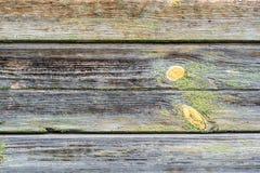 Vieja textura de madera del grunge Fotografía de archivo libre de regalías