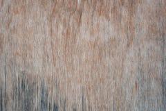 Vieja textura de madera Fondo rústico sucio imágenes de archivo libres de regalías