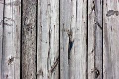 Vieja textura de madera gris Fotografía de archivo libre de regalías