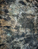 Vieja textura de madera negra para el fondo Imagenes de archivo