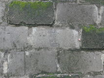 Vieja textura del fondo de la pared del bloque Imagen de archivo libre de regalías