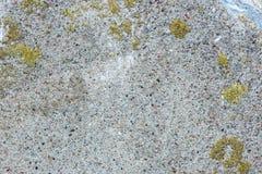 Vieja textura del muro de cemento Fotografía de archivo libre de regalías