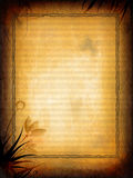 Vieja textura floral Imagen de archivo libre de regalías
