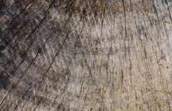 Vieja textura o fondo de madera, modelo de madera natural del Grunge Imagen de archivo libre de regalías