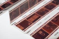 Vieja tira de la película de la negativa 35m m en el fondo blanco Imagenes de archivo