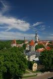 Vieja vista de Tallin Fotografía de archivo