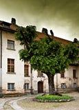 Vieja yarda del castillo con el árbol. Fotos de archivo