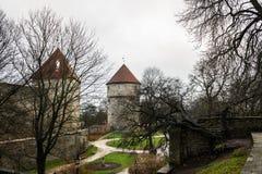 Viejas puertas de la torre en Toompea, Tallinn Fotografía de archivo