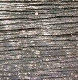 Viejas texturas de madera Imágenes de archivo libres de regalías